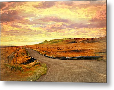 Metal Print featuring the photograph The Road Less Trraveled Sunset by Marty Koch
