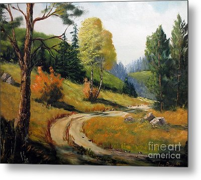The Road Not Taken Metal Print by Lee Piper