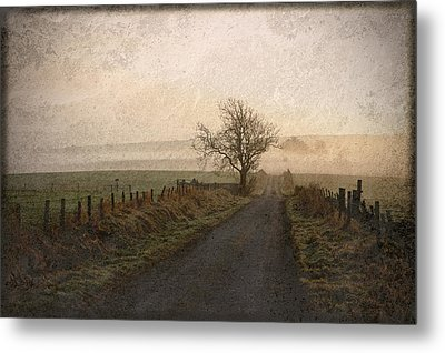 The Road Not Taken Metal Print by Liz  Alderdice