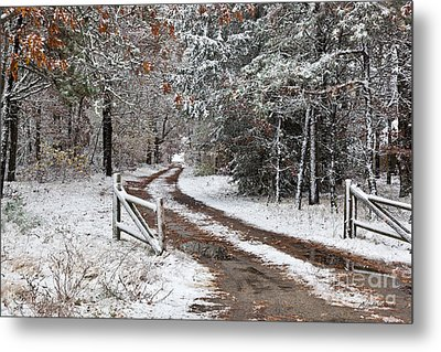The Road To The River Metal Print by Michelle Wiarda