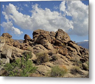 The Rock Garden Metal Print by Michael Pickett