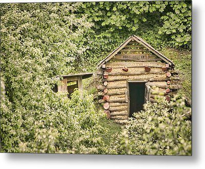 The Root Cellar Metal Print by Heather Applegate