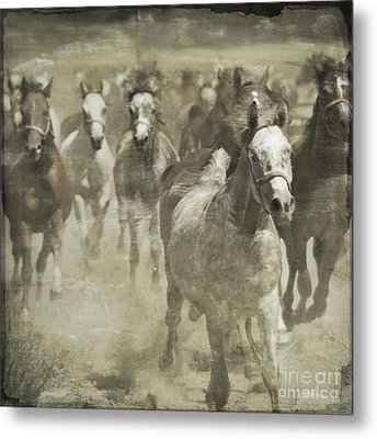 The Run For Freedom Metal Print by Angel  Tarantella