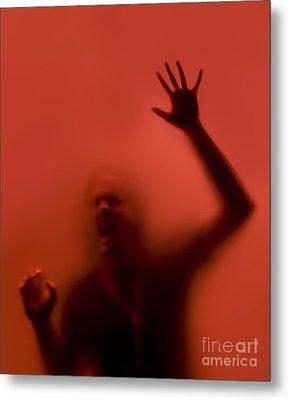 The Scream Metal Print by Diane Diederich