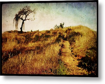 The Secret Pathway To Aspiration Metal Print