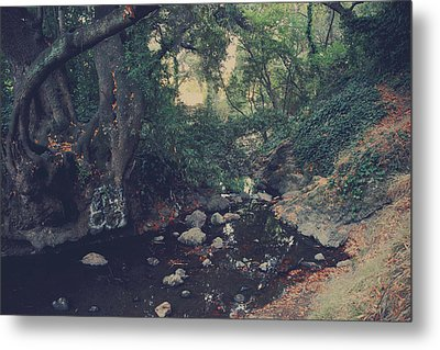The Secret Spot Metal Print by Laurie Search