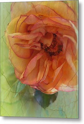 The Sensitive One Metal Print by Shirley Sirois