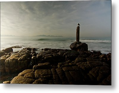 The Sentry And The Sea Metal Print by Aaron Bedell