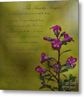The Serenity Prayer  Metal Print by MaryJane Armstrong