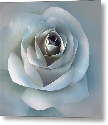 The Silver Luminous Rose Flower Metal Print by Jennie Marie Schell
