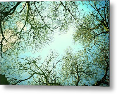 The Sky Metal Print by Guido Montanes Castillo