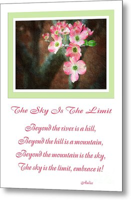 The Sky Is The Limit V 12 Metal Print by Andee Design