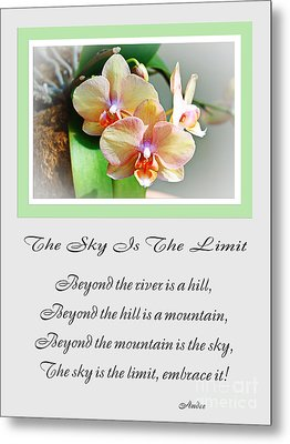 The Sky Is The Limit V 4 Metal Print by Andee Design