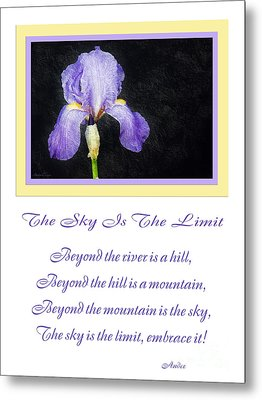 The Sky Is The Limit V 9 Metal Print by Andee Design