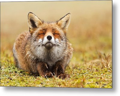 The Smiling Fox Metal Print