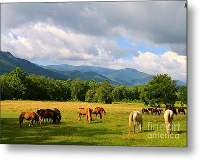 The Smokies Metal Print by Jay Nodianos