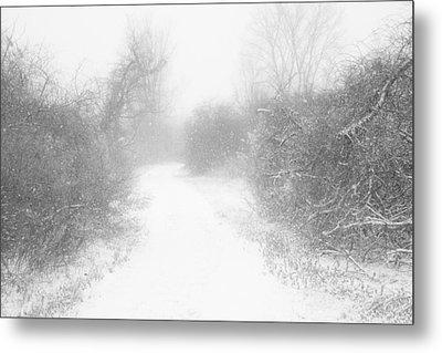 The Snowy Winter Path Metal Print by Gary Heller