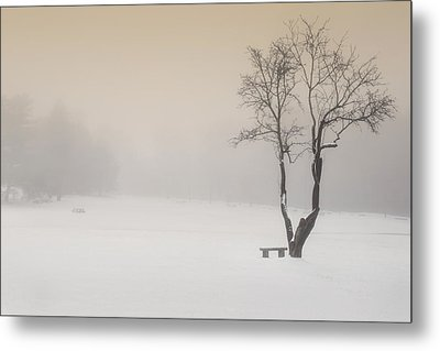 The Solitude Of Winter Metal Print by Bill Wakeley