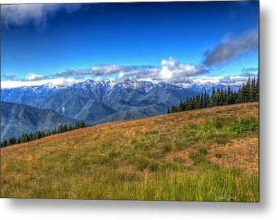 The Sound Of Music Metal Print by Heidi Smith