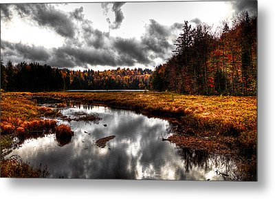 The South End Of Cary Lake Metal Print by David Patterson