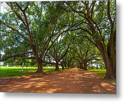 The Southern Way  Metal Print by Steve Harrington
