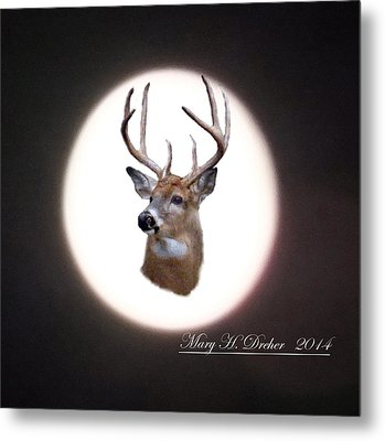 The Spirit Of Goldie Metal Print by Mary Dreher