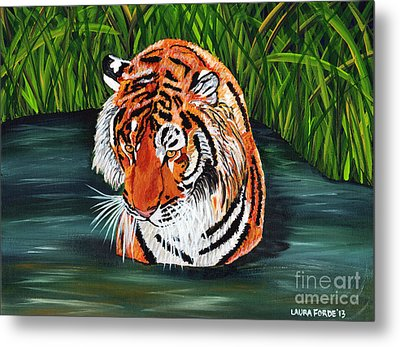 The Stare Metal Print by Laura Forde