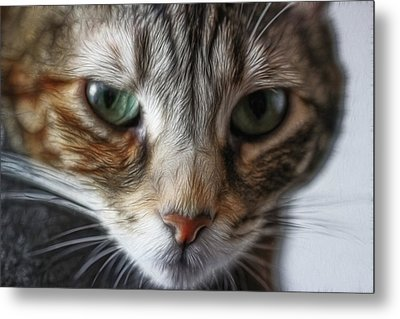 Metal Print featuring the digital art 00002 The Stare by Photographic Art by Russel Ray Photos