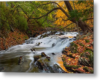 The Still River Metal Print by Bill Wakeley