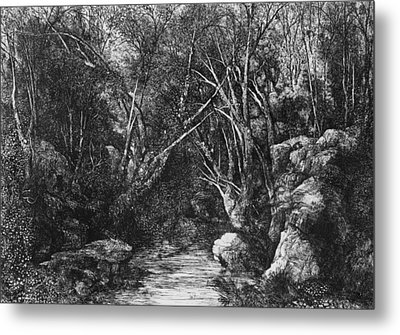 The Stream Through The Trees Metal Print