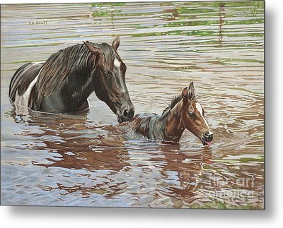 The Swimming Lesson Metal Print by Helen Bailey