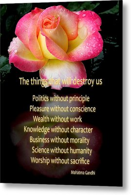 Metal Print featuring the photograph The Things That Will Destroy Us by George Bostian