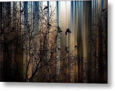 The Thorn Birds Metal Print by Marek Czaja