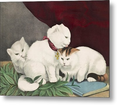 The Three White Kittens Circa 1856 Metal Print by Aged Pixel