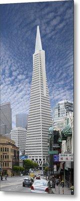 The Transamerica Pyramid - San Francisco Metal Print by Mike McGlothlen