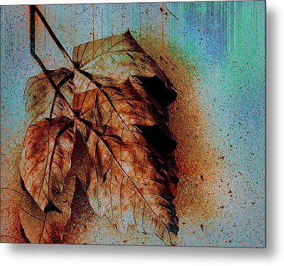 The Transience Of All Things Metal Print
