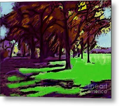 The Trees Metal Print by Susan Townsend