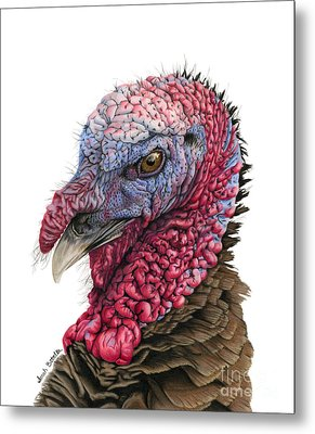 The Turkey Metal Print
