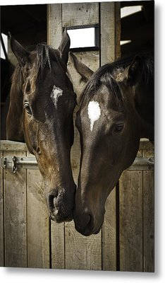 The Two Of Us Metal Print by Lesley Rigg