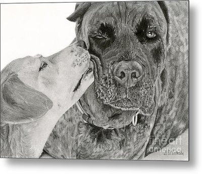 The Unconditional Love Of Dogs Metal Print by Sarah Batalka