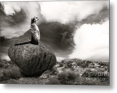 Metal Print featuring the photograph The View by Christine Sponchia