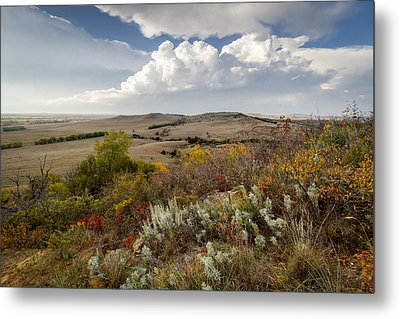 The View From Coronado Heights Metal Print