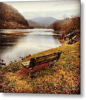 The View Metal Print by Kerri Farley