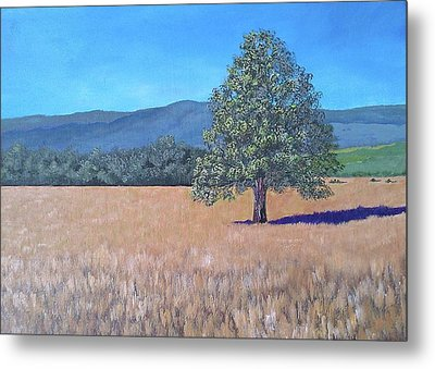 Metal Print featuring the painting The View by Suzanne Theis
