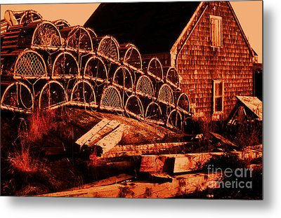 The Waiting Traps Metal Print by Lydia Holly