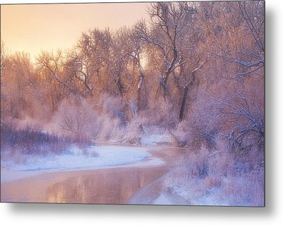 The Warmth Of Winter Metal Print by Darren  White