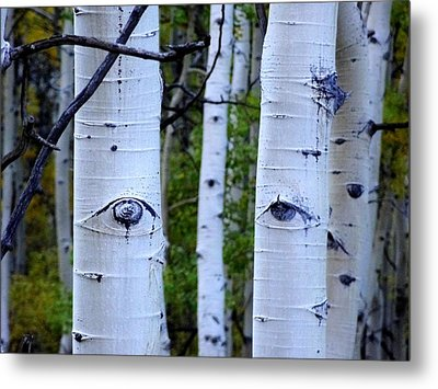 The Watcher Metal Print by Lanita Williams
