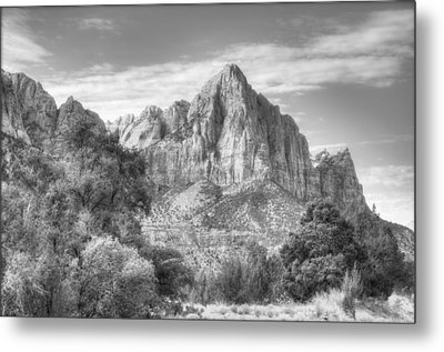 Metal Print featuring the photograph The Watchman by Jeff Cook