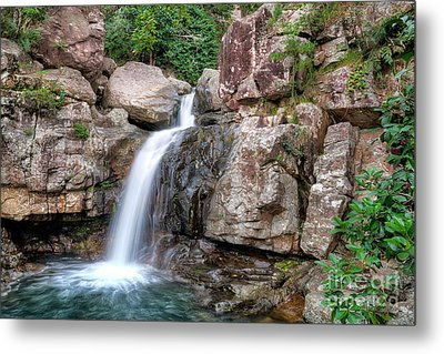 The Water Falls Metal Print by Shannon Rogers
