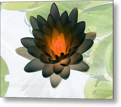 Metal Print featuring the photograph The Water Lilies Collection - Photopower 1035 by Pamela Critchlow